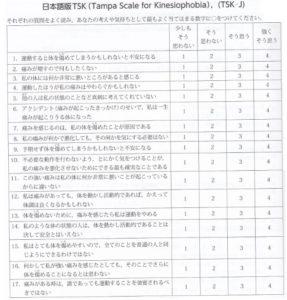 日本語版TSK