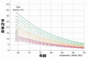 歩行速度と平均余命の関係