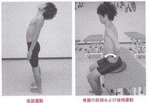 腰椎伸展運動と骨盤前後傾運動