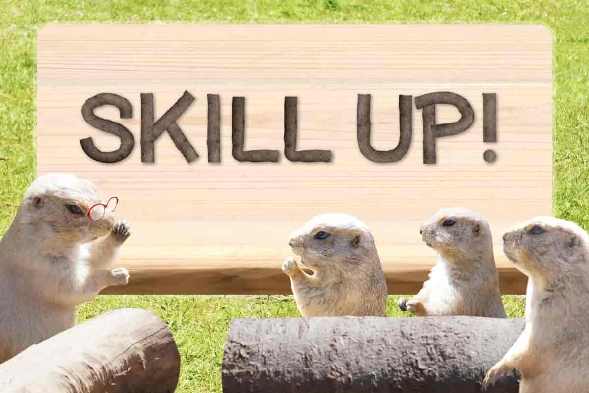 SKILL UPには運動学習を知ること