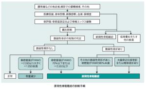 原発性骨粗鬆症の診断基準(骨粗鬆症ガイドライン)