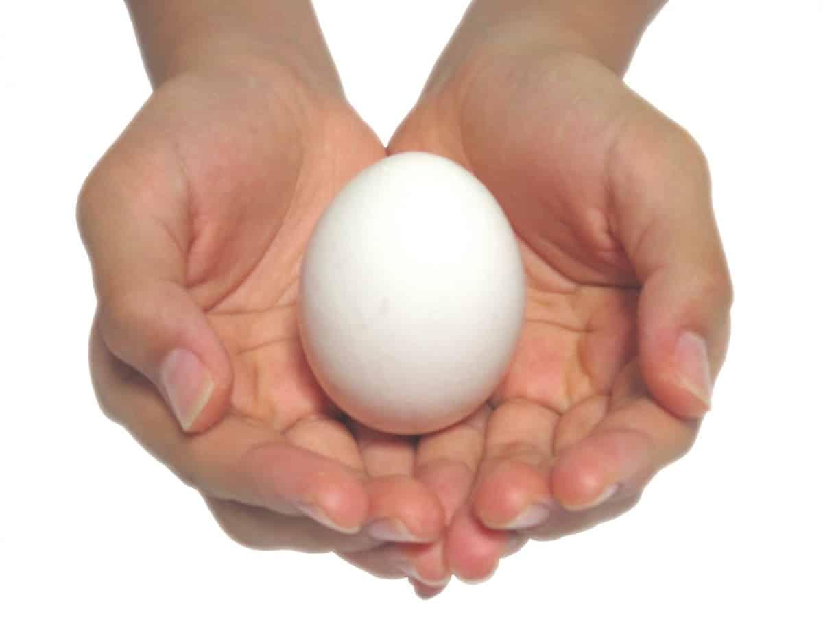 卵がコスパ最強で便利