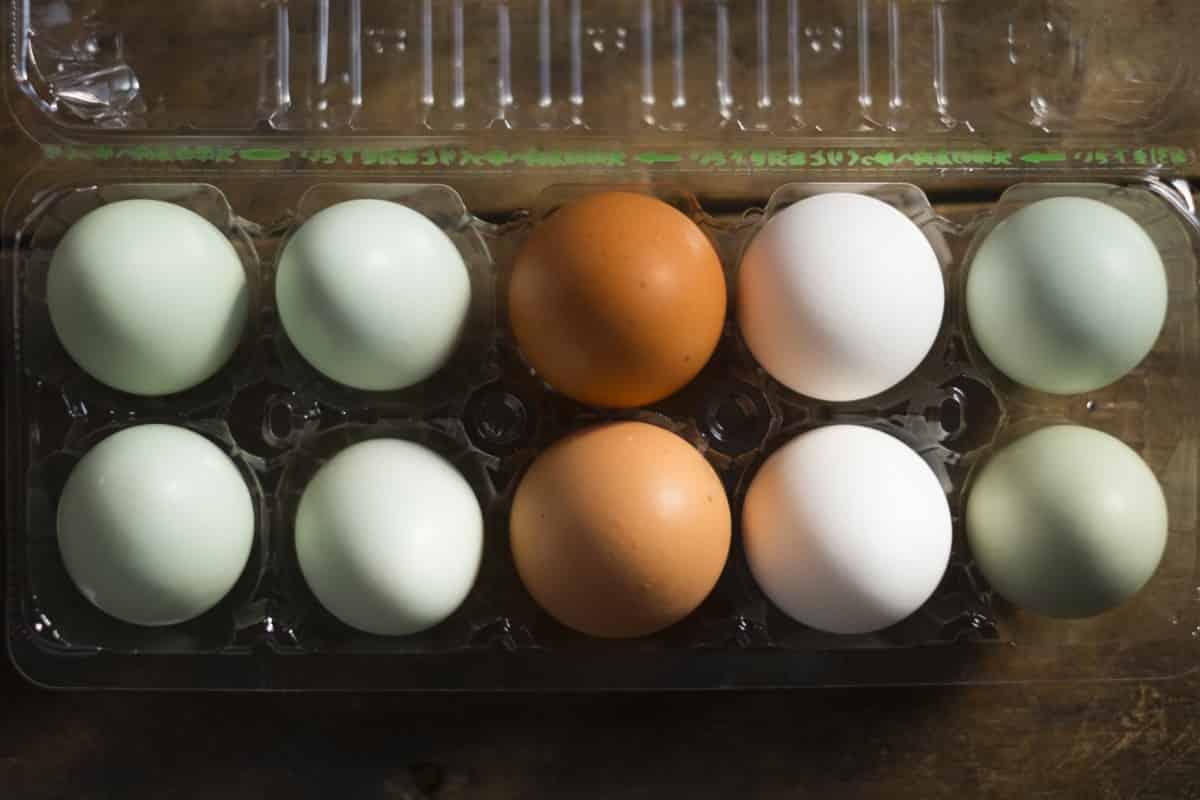 筋トレやダイエットや美容にこそ卵の摂取を